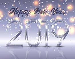 Meilleurs voeux pour la nouvelle année 2019!