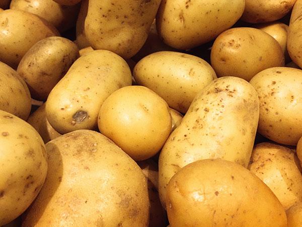 Kühlung für Kartoffellager mieten