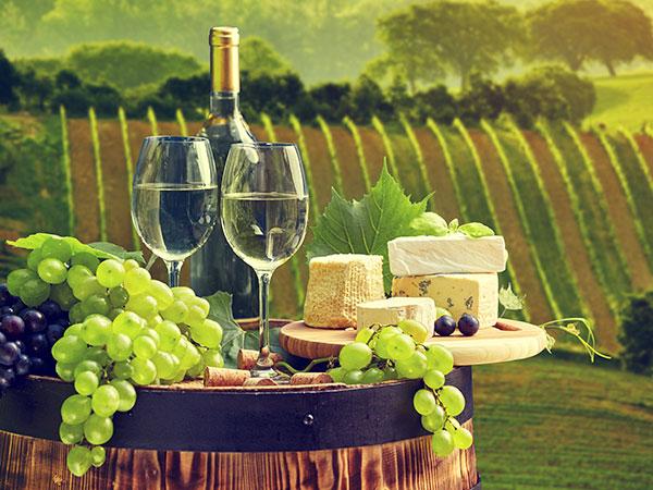 Kühlung für die Weinproduktion mieten
